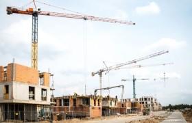 nowe-zerniki-budowa