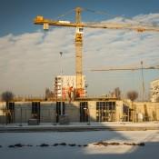 nowe-zerniki-luty-2017 (6)