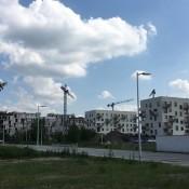 nowe-zerniki-sierpien-2018 (1)