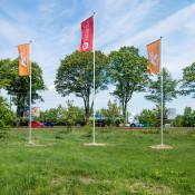 nowe zerniki flagi (3)
