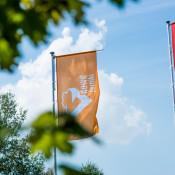 nowe zerniki flagi (5)