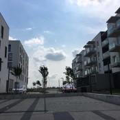 nowe-zerniki-sierpien-2018 (3)