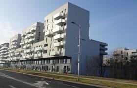 830-NOwe-Zerniki